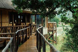Gqoyeni Bush Lodge Hluhluwe uMfolozi Game Reserve