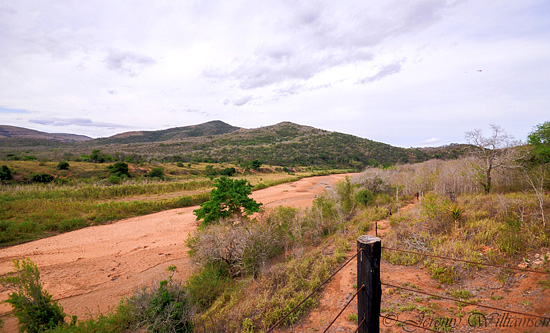 Stunning views from your self catering unit - Hluhluwe iMfolozi Game Reserve Big 5 Nselweni Bush Camp Self Catering Accommodation Bookings KwaZulu-Natal South Africa