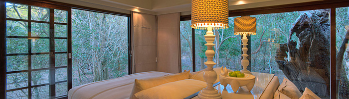 Private Suite View Luxury Game Lodge Phinda Forest Lodge Phinda Private Game Reserve Big 5 Safari