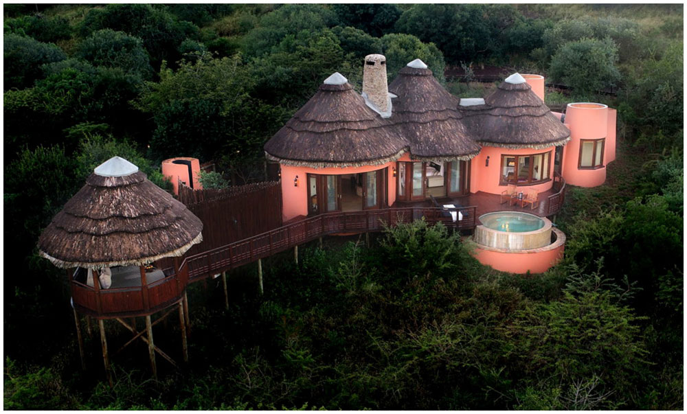 Bush Suite Thanda Private Game Reserve Luxury Game Lodge Thanda Safari Lodge Big 5 Wildlife