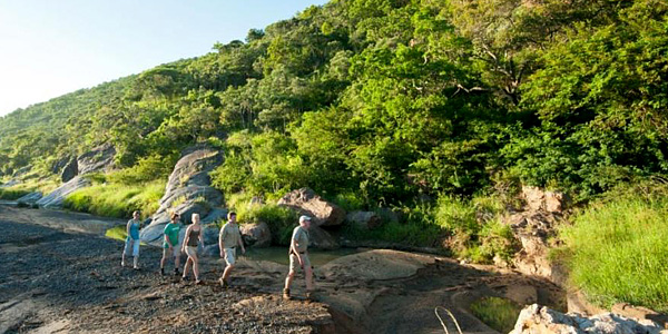 Safari Bush Walks Big 5 Hluhluwe iMfolozi Reservations Manyoni Private Game Reserve Leopard Mountain Game Lodge Zululand Rhino Reserve