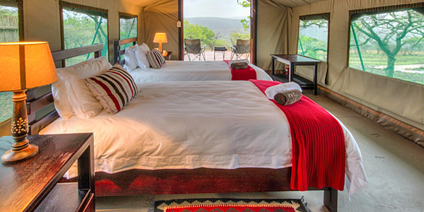 Luxury Tented Camp Mavela Game Lodge Manyoni Private Game Reserve Zululand Rhino Reserve South Africa